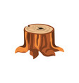 detailed cartoon tree stump with roots vector image