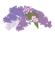 Greeting Card with Blooming Lilac and Apple Tree vector image