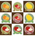 Set of various fresh fruit label badge tag sticker vector image