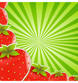 Strawberry And Green Sunburst vector image