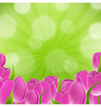 Card With Tulips vector image vector image