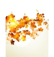 Autumnal leaf of maple and sunlight EPS 10 vector image