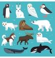 Polar animals flat icons vector image