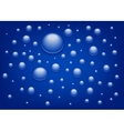 Blue drops background vector image