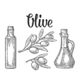 Bottle glass of Olive oil with cork stopper and vector image