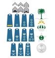 Air Force insignia Saudi Arabia vector image vector image