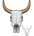cow skull vector image vector image