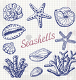 collection of sea shells coral and starfish on vector image