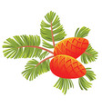 green spruce branch with two cones isolated vector image