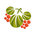 Three simple green leaves with orange seeds vector image