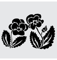 decorative pansies vector image