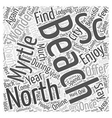 north myrtle beach sc Word Cloud Concept vector image