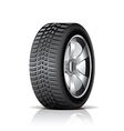 object tire side vector image