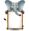funny elephant cartoon with blank sign vector image vector image