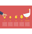 Businessman with goose and golden egg infographic vector image