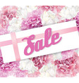 peony sale banner vector image