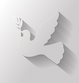 flat dove vector image