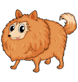 A hairy dog vector image vector image