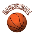 Textured basketball ball vector image
