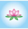 Lotus flower vector image
