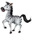 cute zebra cartoon walking vector image