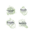 vegetables logo concept vector image