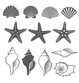 Sea shells and starfish set vector image