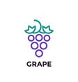 grape linear logo element vector image