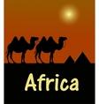camel in egyptian desert stencil vector image