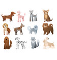 funny and cute cartoon dogs and puppy pet vector image