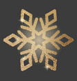 icon of snowflake vector image