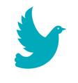 wedding dove blue icon vector image