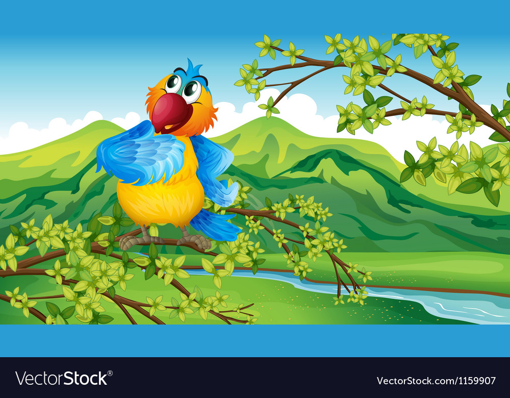 A parrot near the riverbank vector