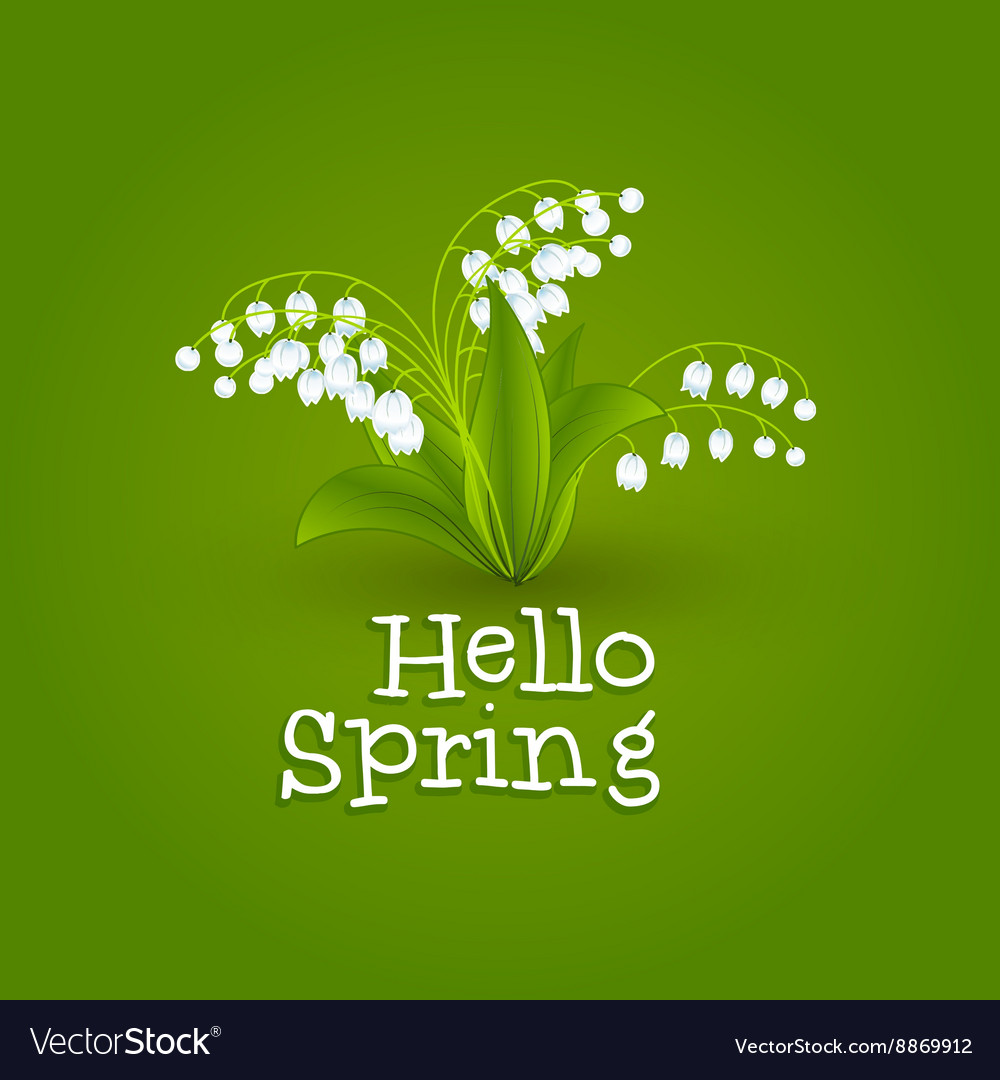 Spring background with snowdrops hello spring vector