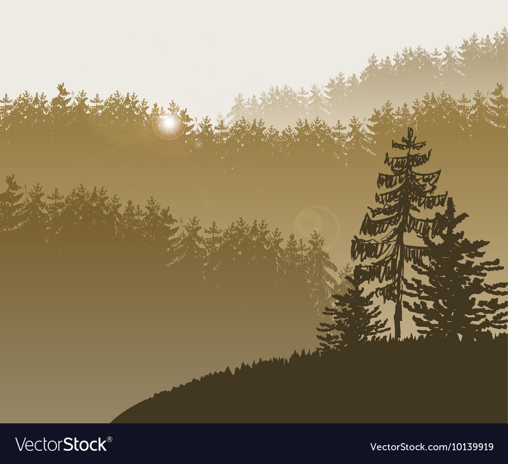 Forest trees bg vector