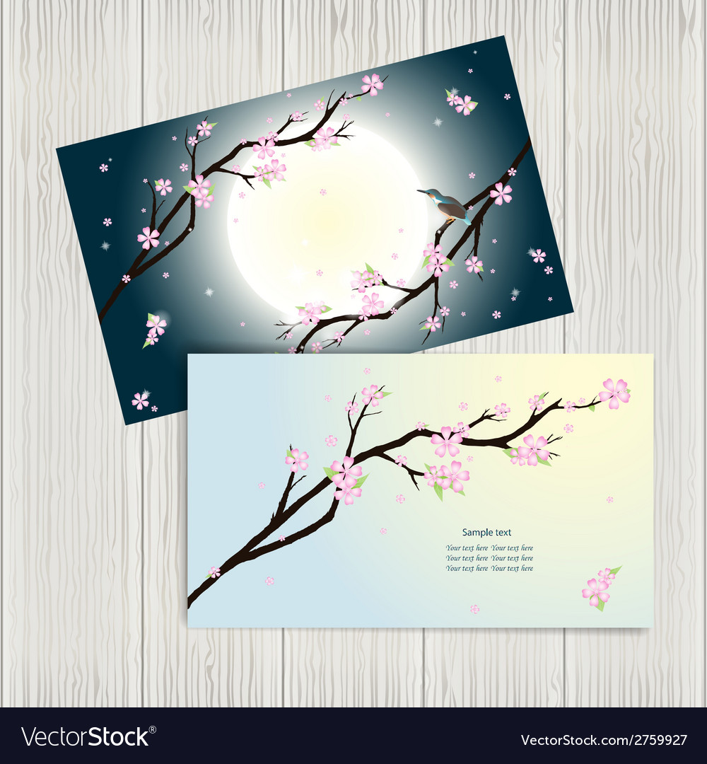 Business cards with stylized cherry blossom vector