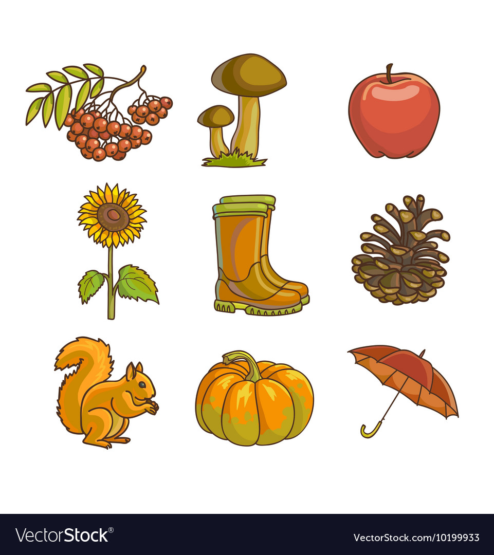 Autumn or fall icon and objects set for design vector