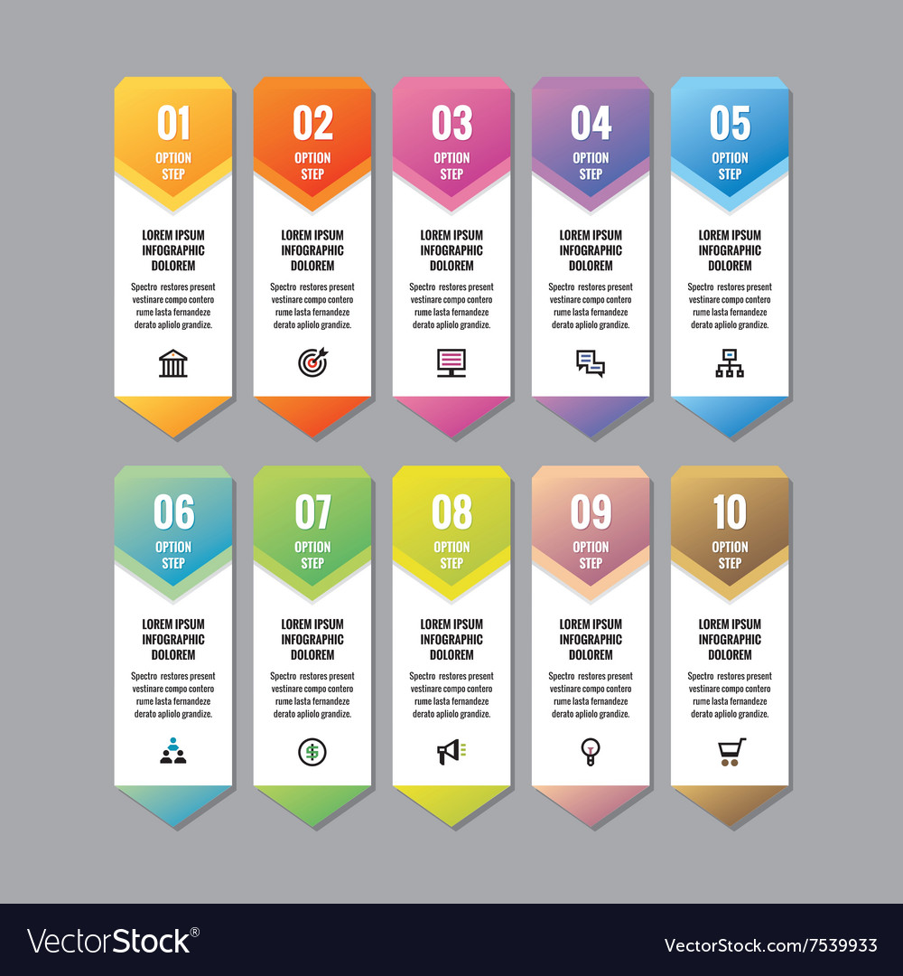 Infographic business concept vertical banner vector