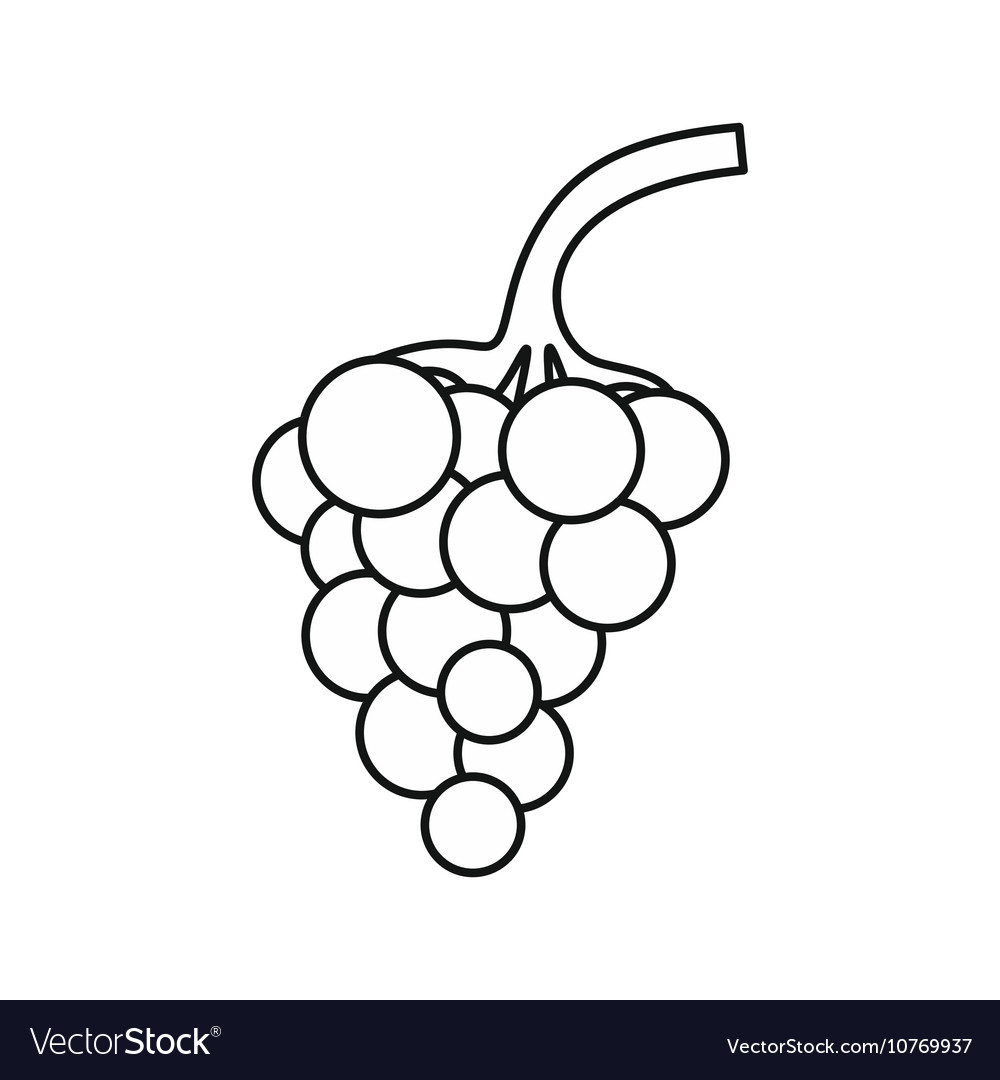 Bunch of grapes icon outline style vector