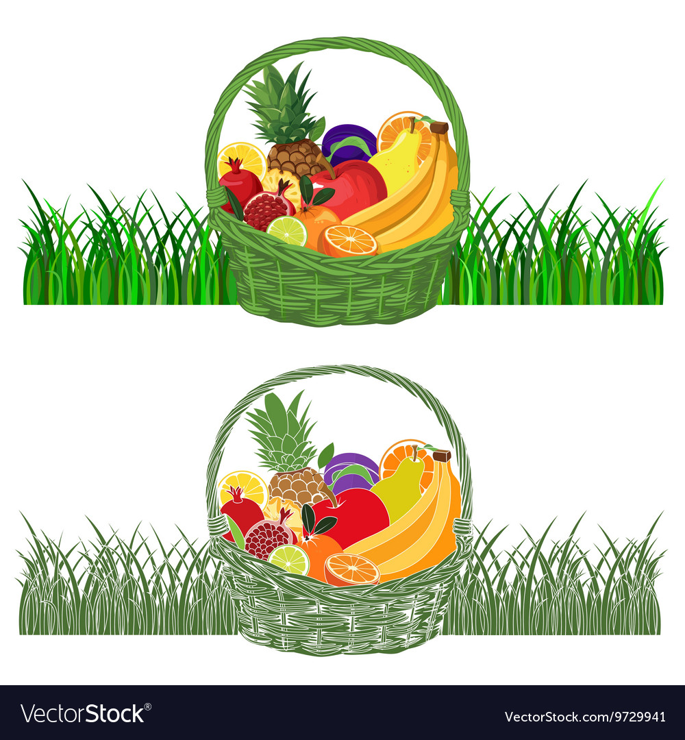 Basketwithfruits color vector