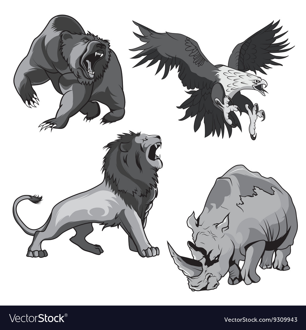 Zoo rhino hawk grizzly bear and savannah lion vector