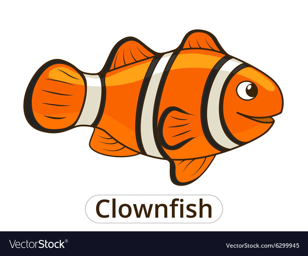 Clownfish sea fish cartoon vector