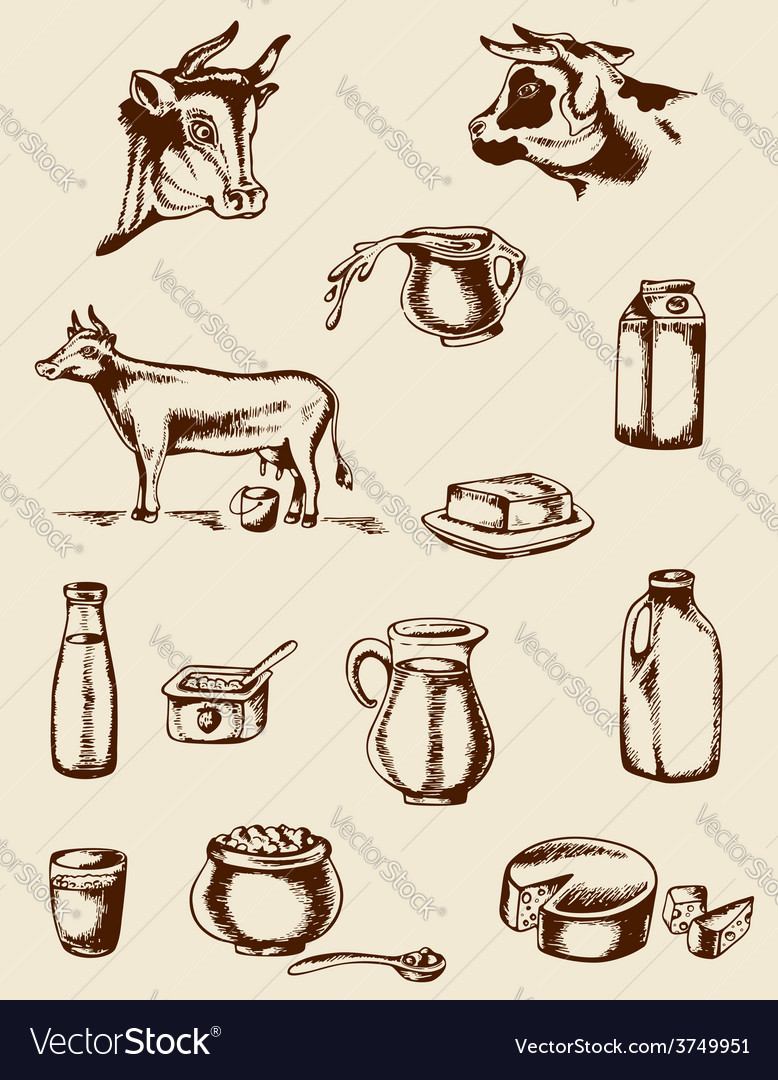 Dairy products and cow vector