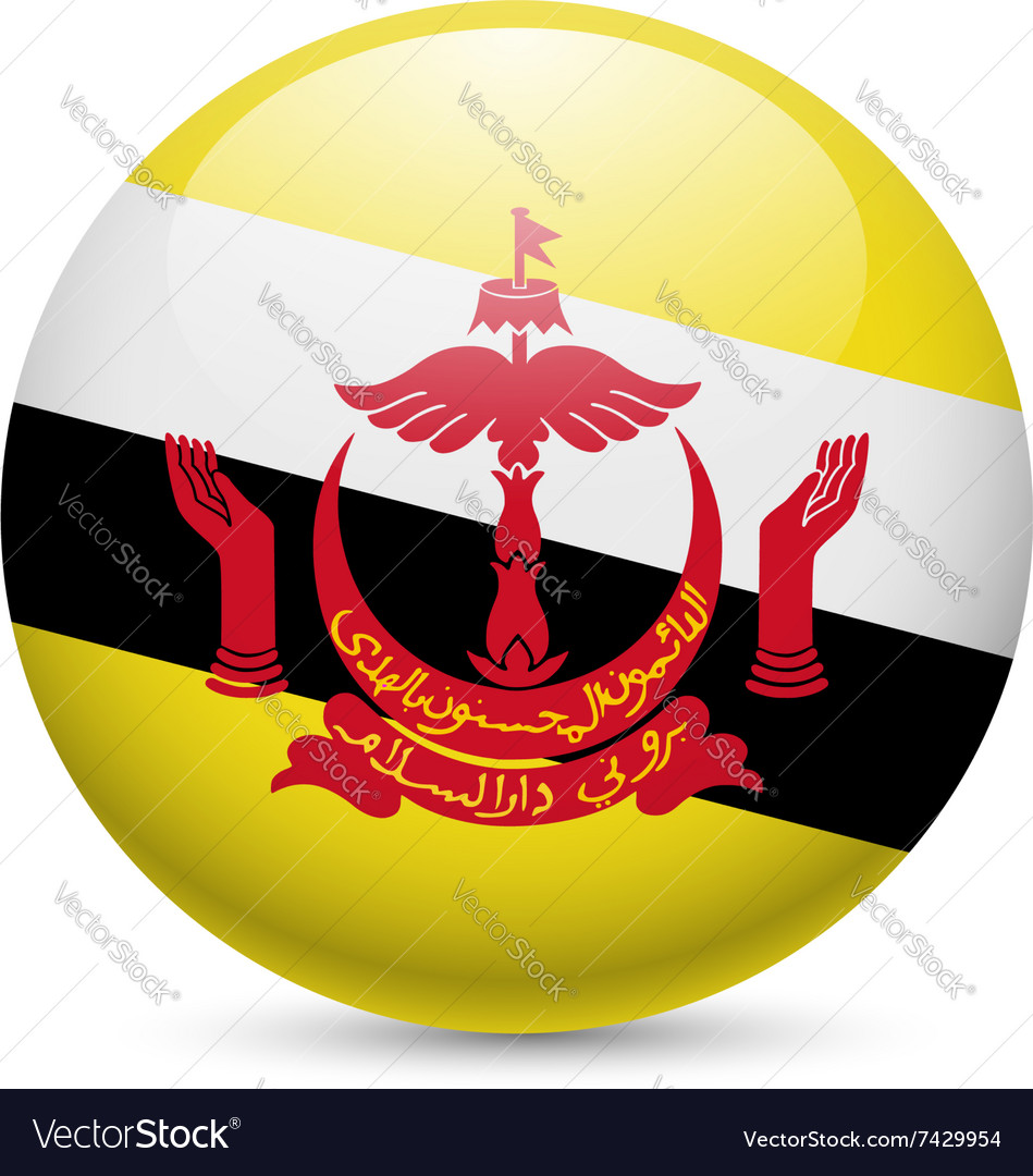 Round glossy icon of brunei vector
