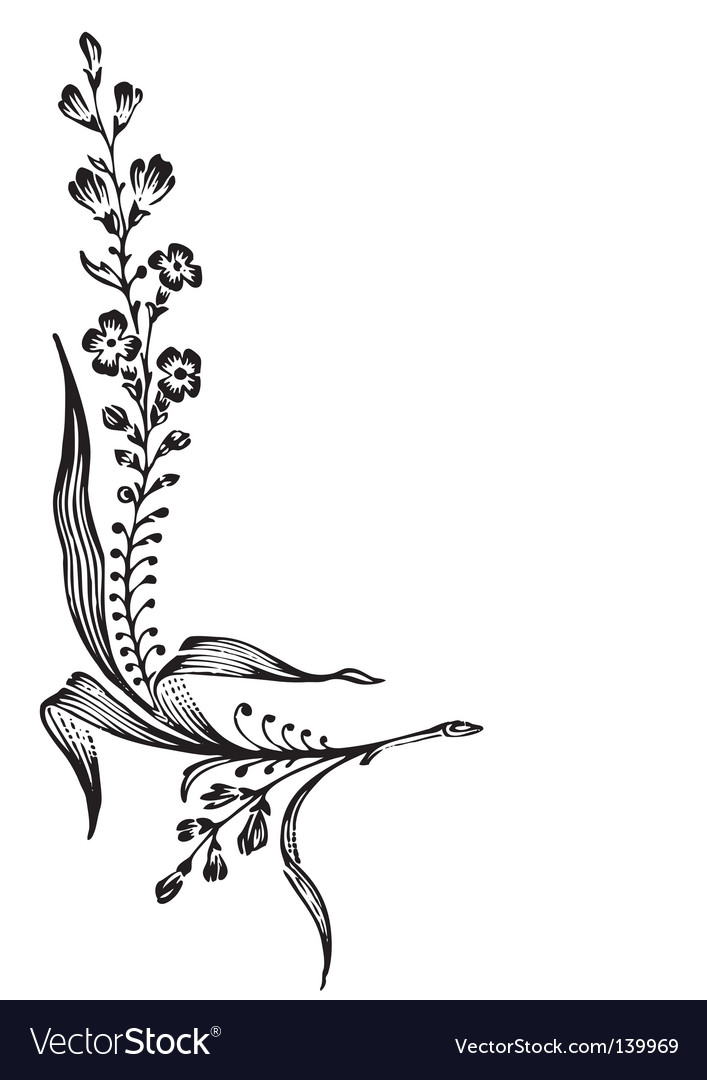 Antique flower corner engraving vector