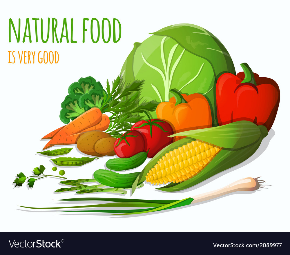 Vegetables still life vector