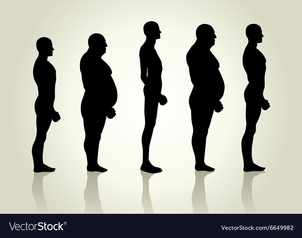 Male body type vector