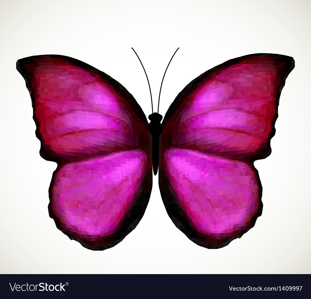 Bright pink butterfly vector