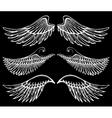 hand drawn wings set vector image