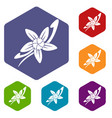 vanilla sticks with a flower icons set hexagon vector image